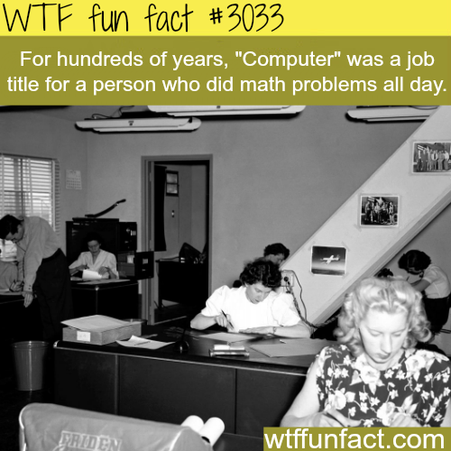 Human Computer -  WTF fun facts