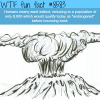 human extinction wtf fun facts