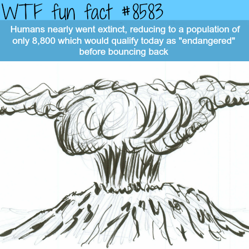 Human extinction - WTF fun facts