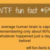 humans brain facts