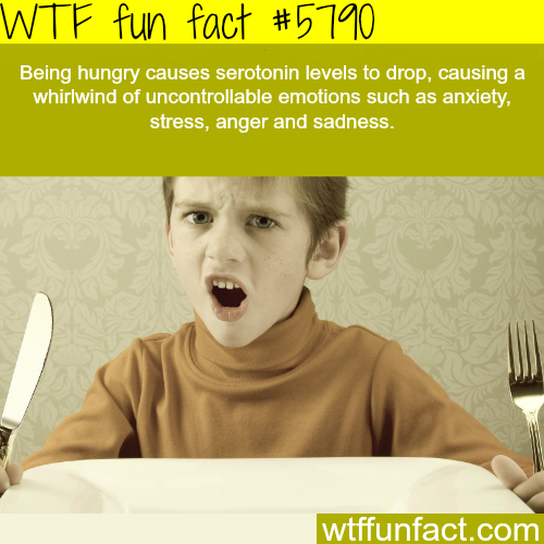Hunger causes anger - WTF fun facts