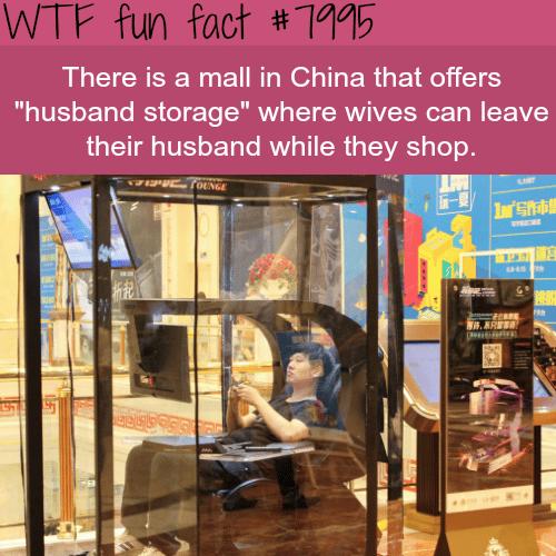 Husband storage - WTF fun fact