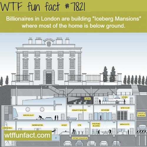 Iceberg Mansions - WTF fun facts
