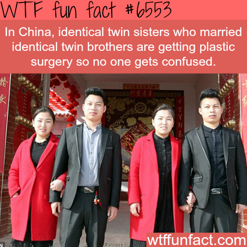 Identical twin sisters who married identical brothers - WTF fun facts