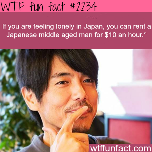 If you are feeling lonely in japan -WTF fun facts