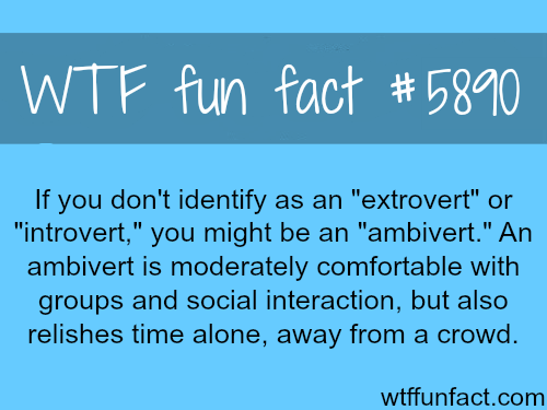 "If you are not an ""extrovert"" or ""introvert""  - WTF fun facts"