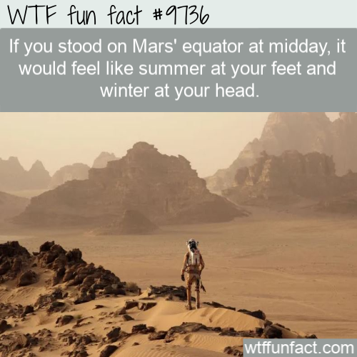 If you stood on Mars' equator at midday