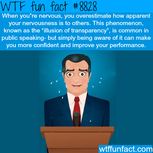 Illusion of transparency - WTF fun facts