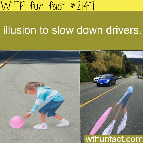 illusion to slow down drivers - WTF fun facts