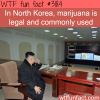 in north korea smoking weed is legal