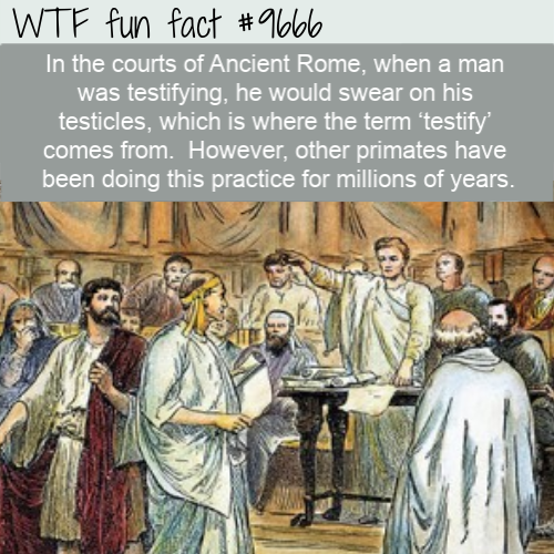 In the courts of Ancient Rome