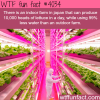 indoor farm in japan that produce food using 99