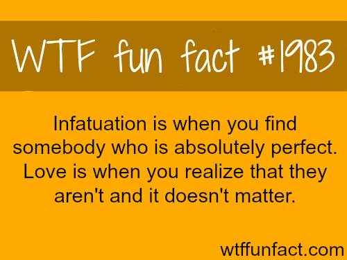 Infatuation vs Love - WTF fun facts
