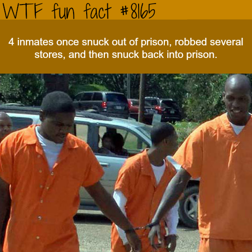 Inmates escape prison and sneak back into it again - WTF fun fact