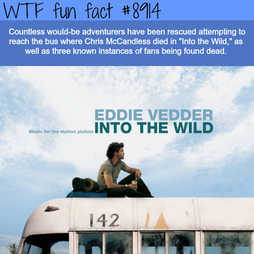 Into The Wild - WTF fun facts