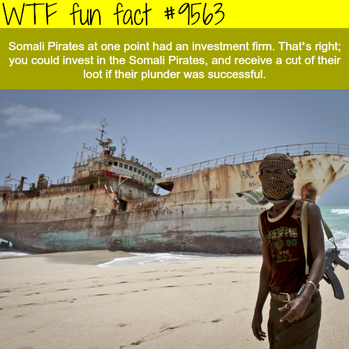 Investment in Somali Pirates - WTF fun fact