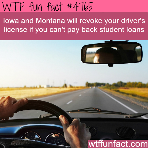 Iowa and Montana - WTF fun facts