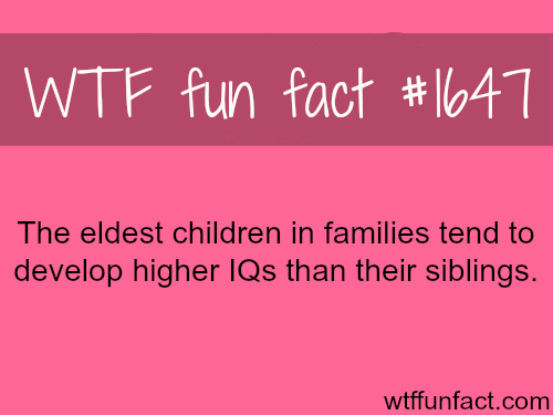 IQ LEVEL - WTF fun facts