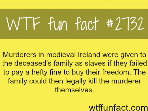 Ireland during the medieval times - WTF fun facts