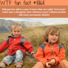 irish twins wtf fun facts