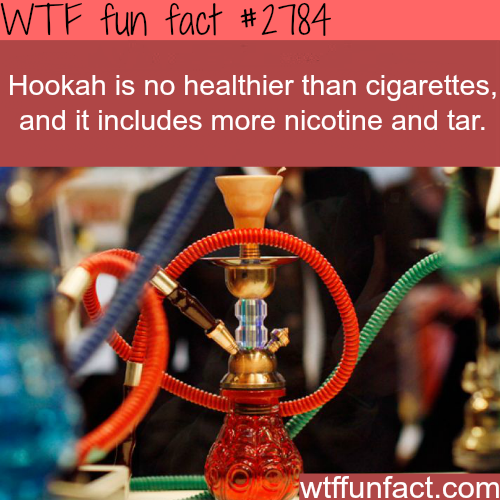 Is hookah healthier than cigarettes -WTF fun facts