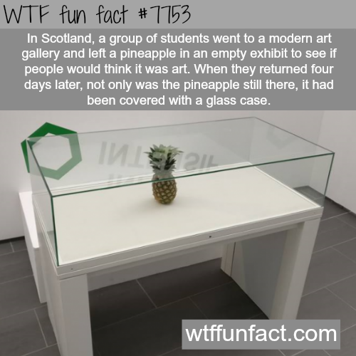 is modern art ugly meaningless and a con wtf - WTF Facts