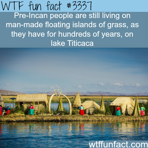 Islands made of grass -  WTF fun facts