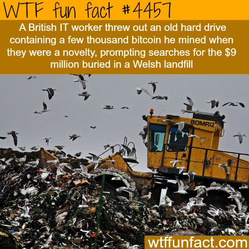 IT worker loses a hard drive that is worth millions of dollars -   WTF fun facts