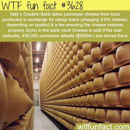 Italy's Bank gives loans for cheese - WTF fun facts