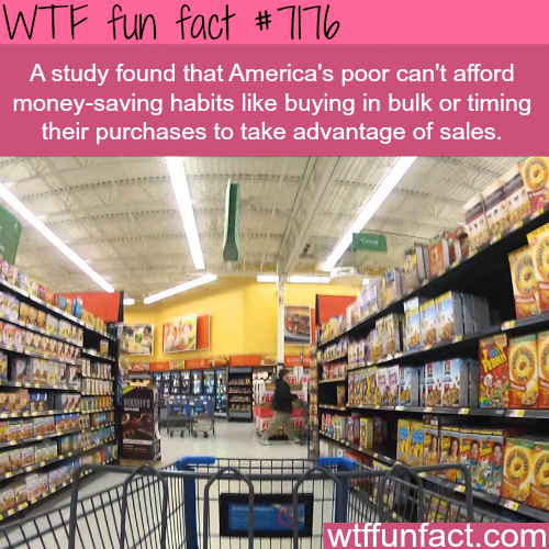 Its expensive to be poor - WTF Fun Fact