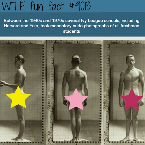 Ivy League Schools - WTF fun facts