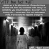 jamais vu wtf fun facts
