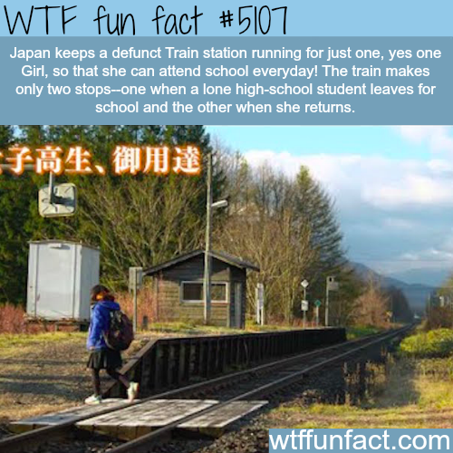 Japan keeps a defunct train station for just one girl - WTF fun facts