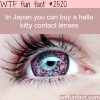 japan s hello kitty contact lenses