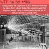 japanese death ray wtf fun facts