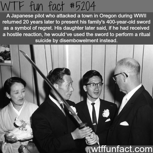 Japanese pilot presents his family's sword to town in Oregon - WTF fun facts