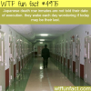 japanese prison facts wtf fun facts