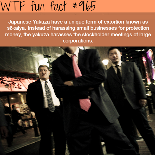 Japanese Yakuza - WTF Fun Facts