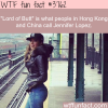 jennifer lopez is called lord of butt in china