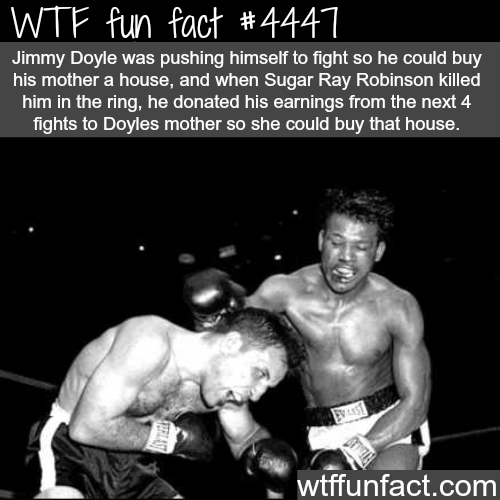 Jimmy Doyle vs Sugar Ray Robinson -   WTF fun facts