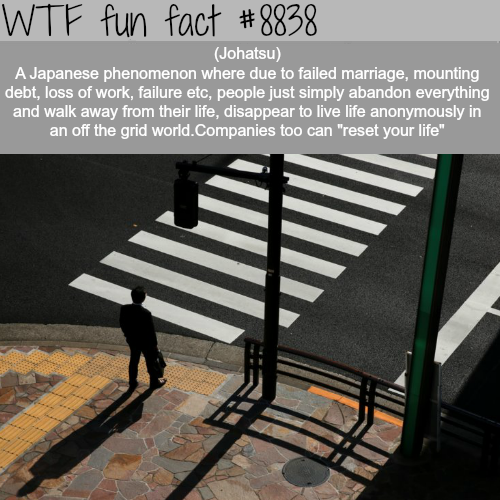 Johatsu - WTF fun facts
