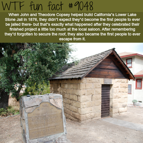 John and Theodore Copsey - WTF fun facts