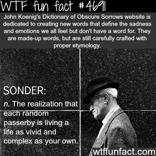 John Koeng's Dictionary of Obscure Sorrows - WTF fun facts