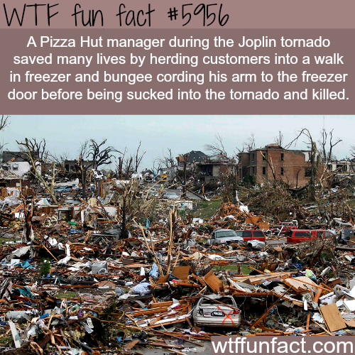 Joplin tornado - WTF fun facts