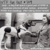 judy the dog wtf fun facts
