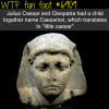 julius caesar wtf fun fact