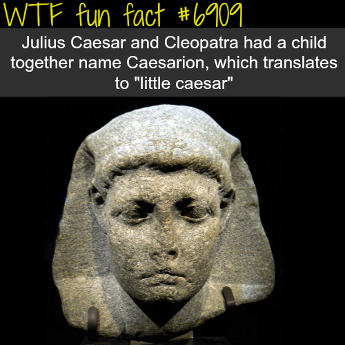 Julius Caesar - WTF fun fact