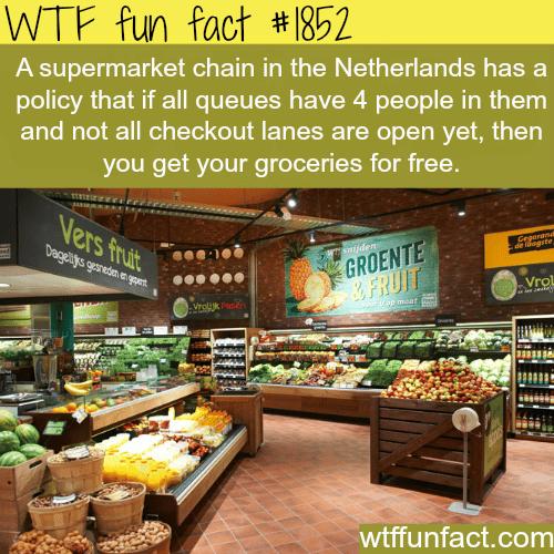 Jumbo Supermarkets -WTF fun facts