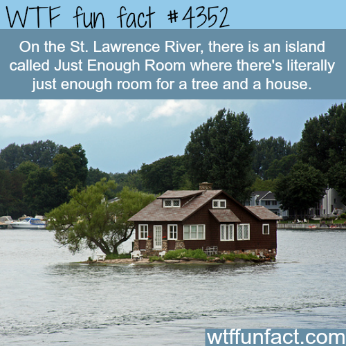Just Enough Room Island -  WTF fun facts
