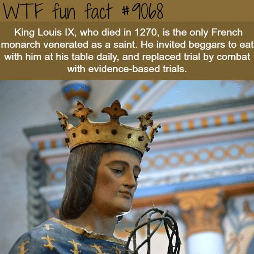 King Louis IX -WTF fun facts